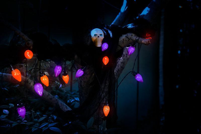 Halloween BO C6 Bulb Lights